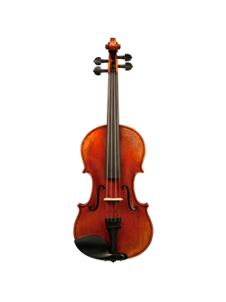 Step-Up & Professional String Instruments